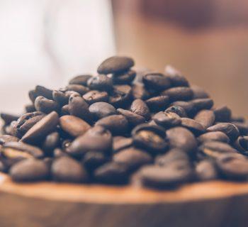 Fresh Roasted Coffees